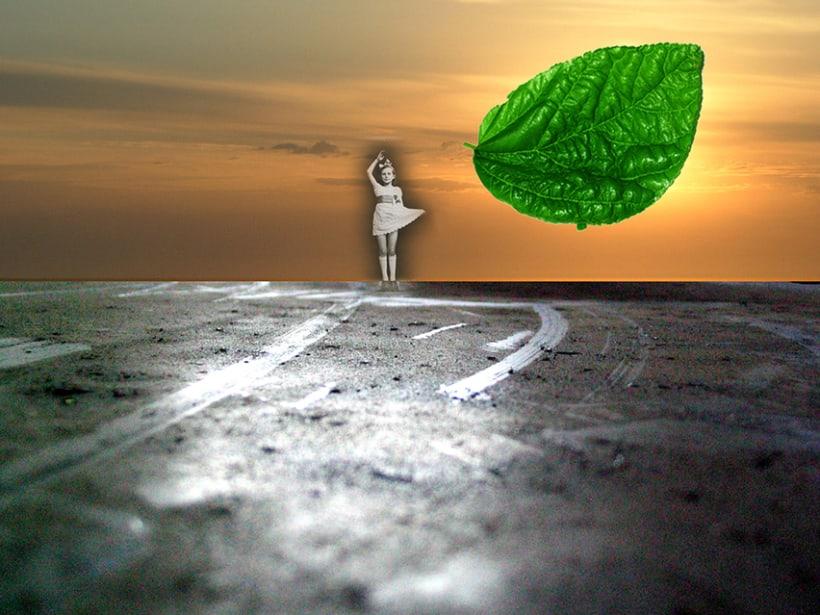 Recordando a Lewis Carroll (un paseo por Playa Verde de Maldonado) 0