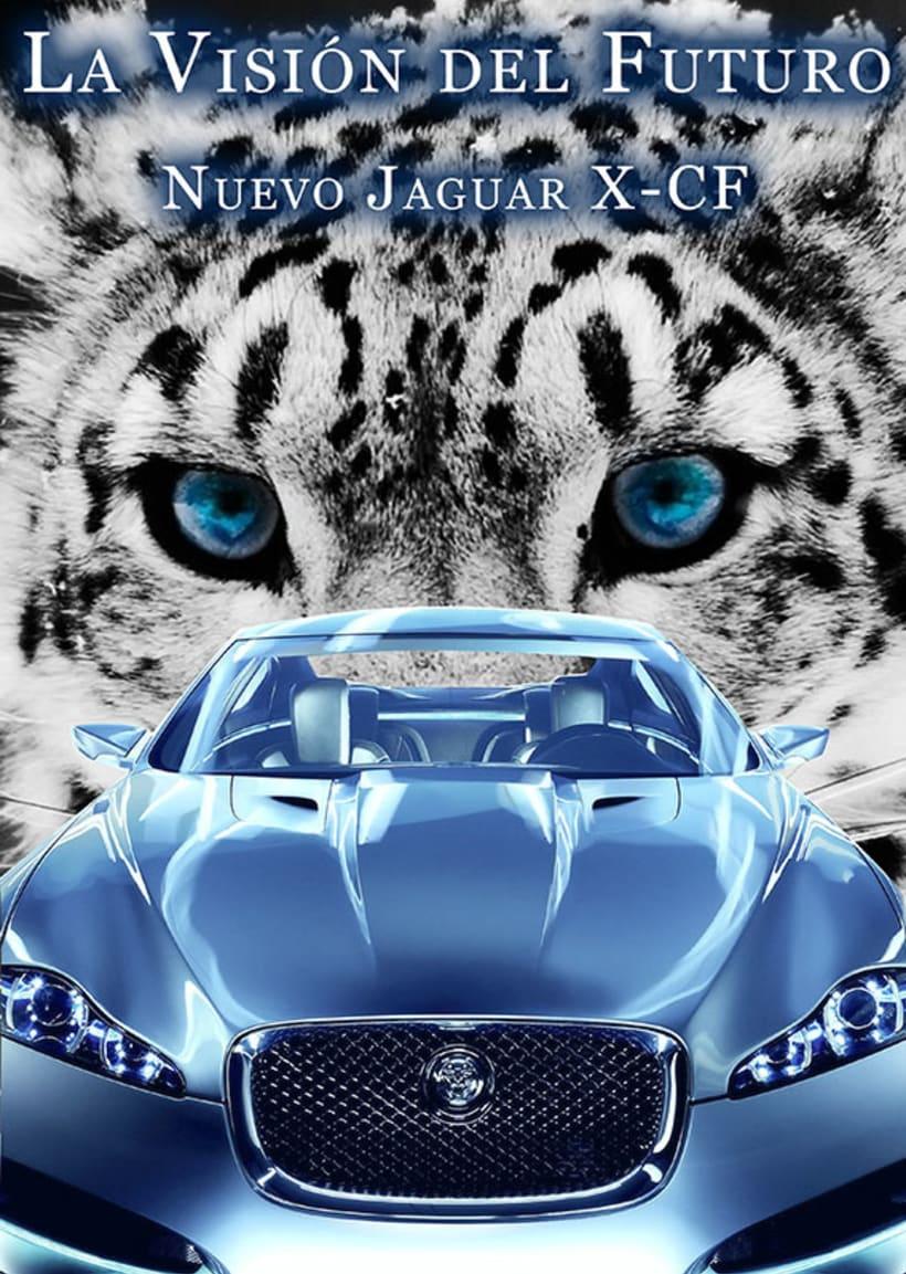 Carteleria de coche Jaguar 6