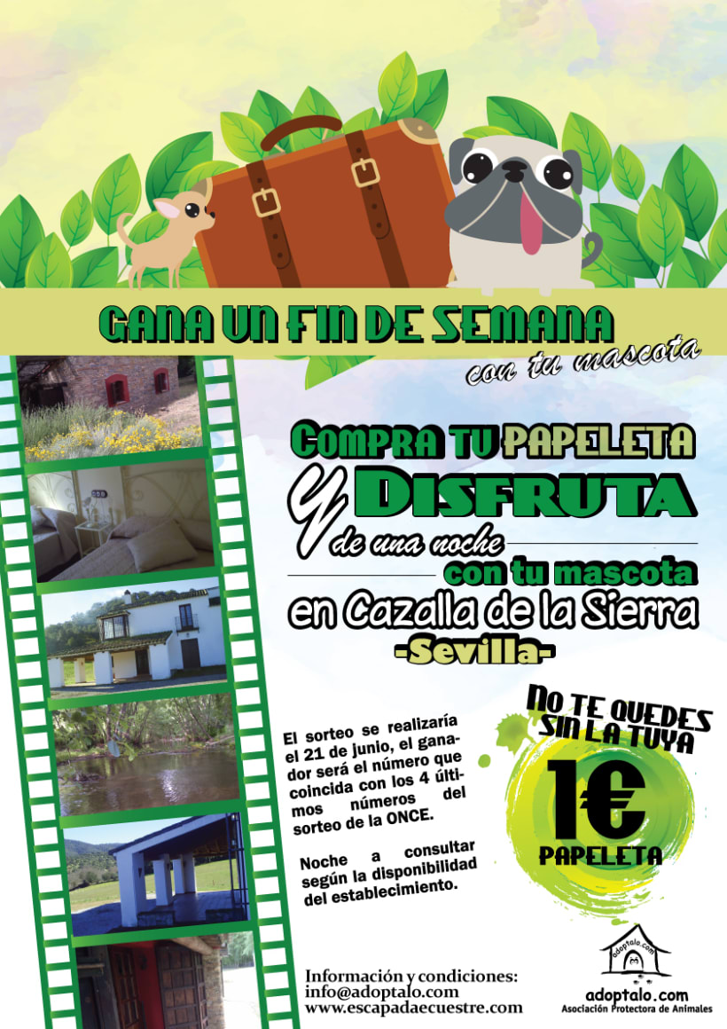 Publicidad 3