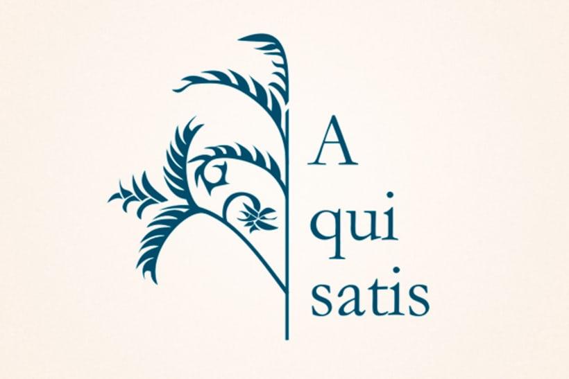 Aquisatis · Imagen corporativa 1
