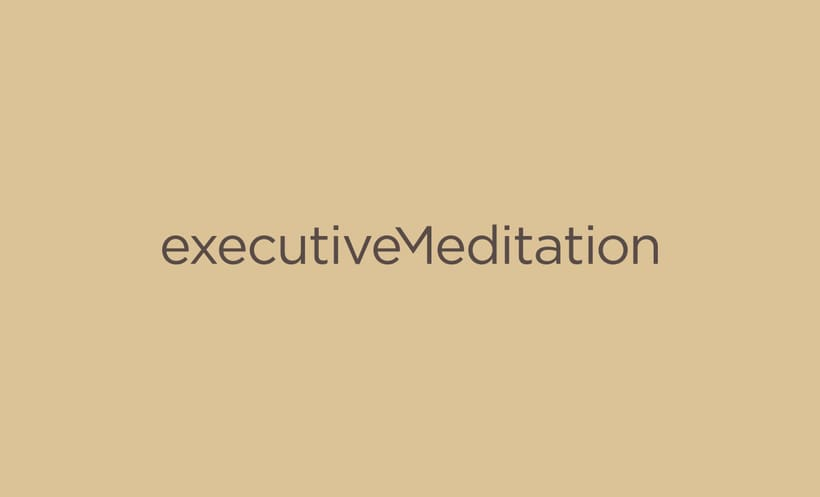 Executive Meditation 1