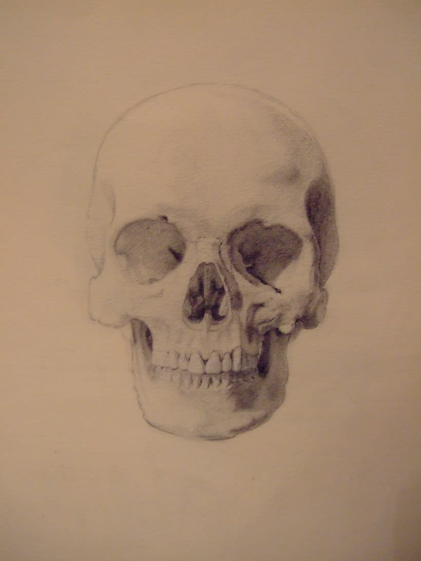 Universidad Complutense de Madrid, aula de anatomía. Reconstrucción anatómica de la cabeza humana 1