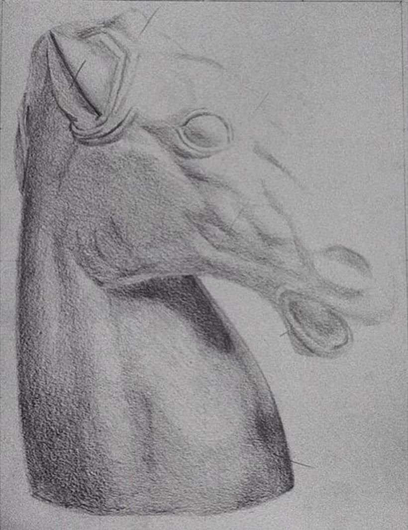 Busto caballo -1