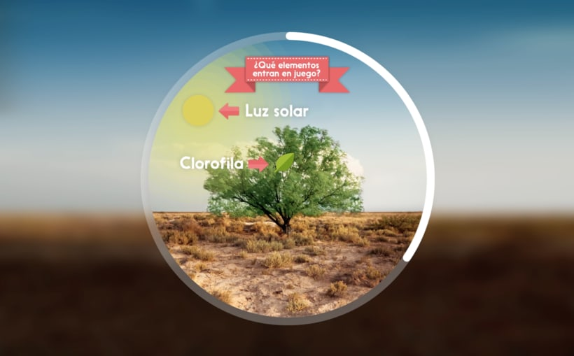 Photosynthesis - Animated infographics 2