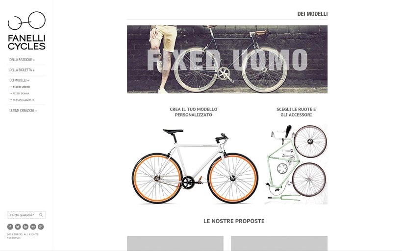 Fanelli Cycles 0