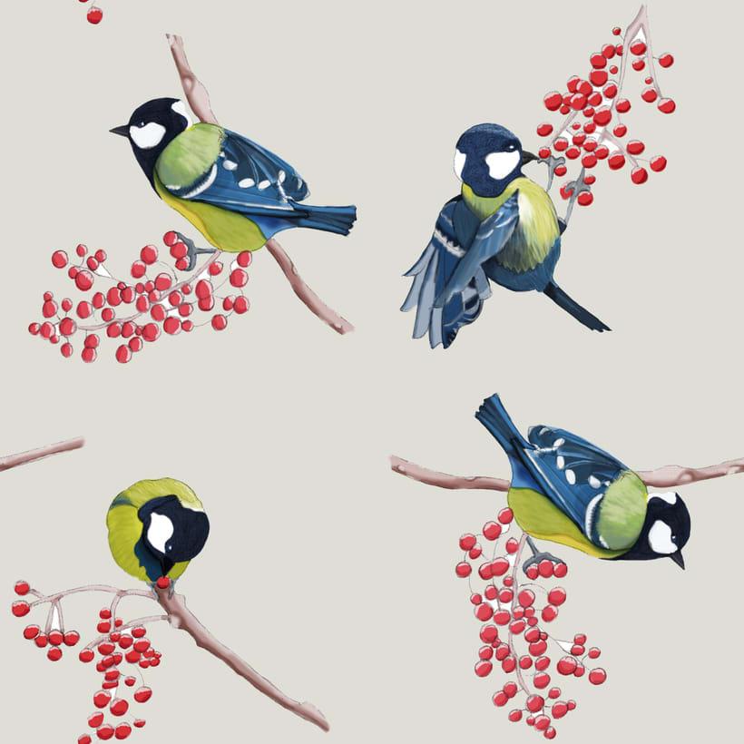 Pájaros. Ilustración técnica mixta 1
