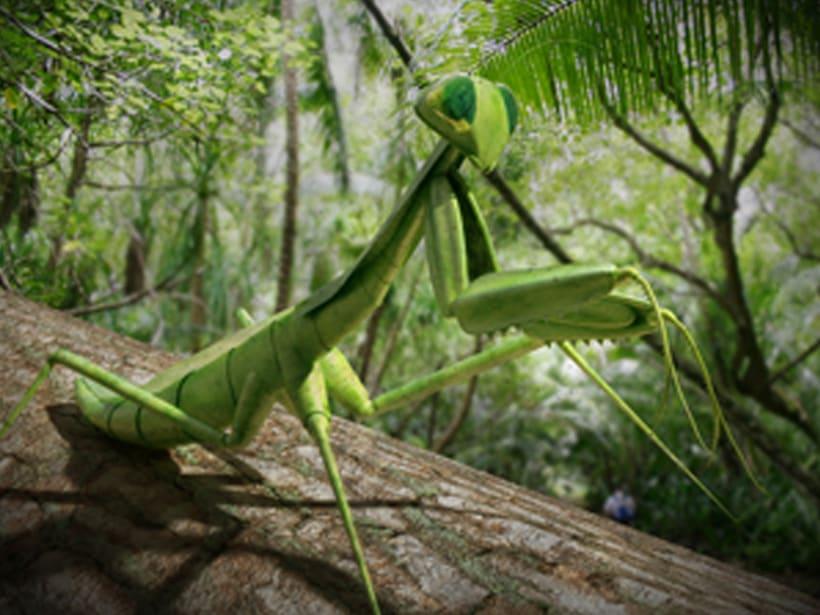 praying mantis - 3d model 1