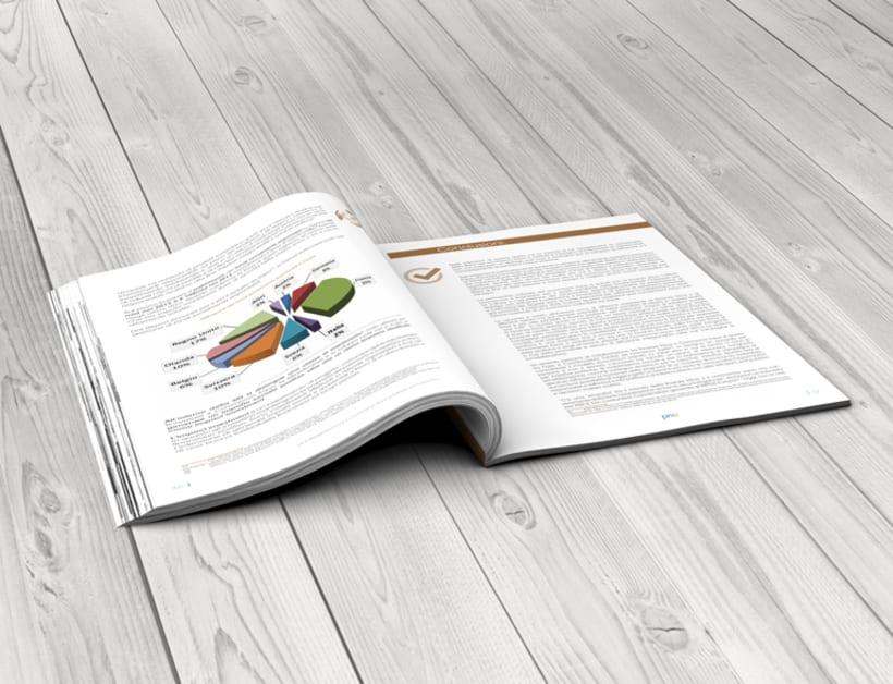 Maquetación y diseño de Guías Temáticas del proyecto PRICE 4
