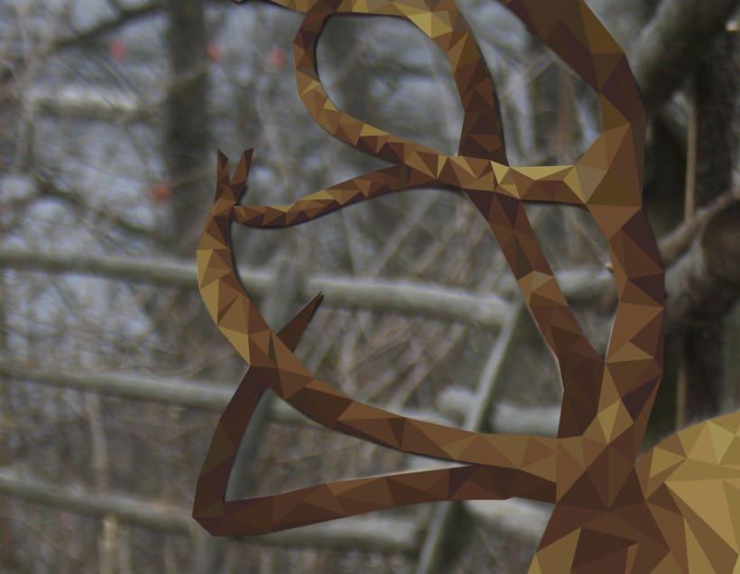 Into the geometric wild. 1
