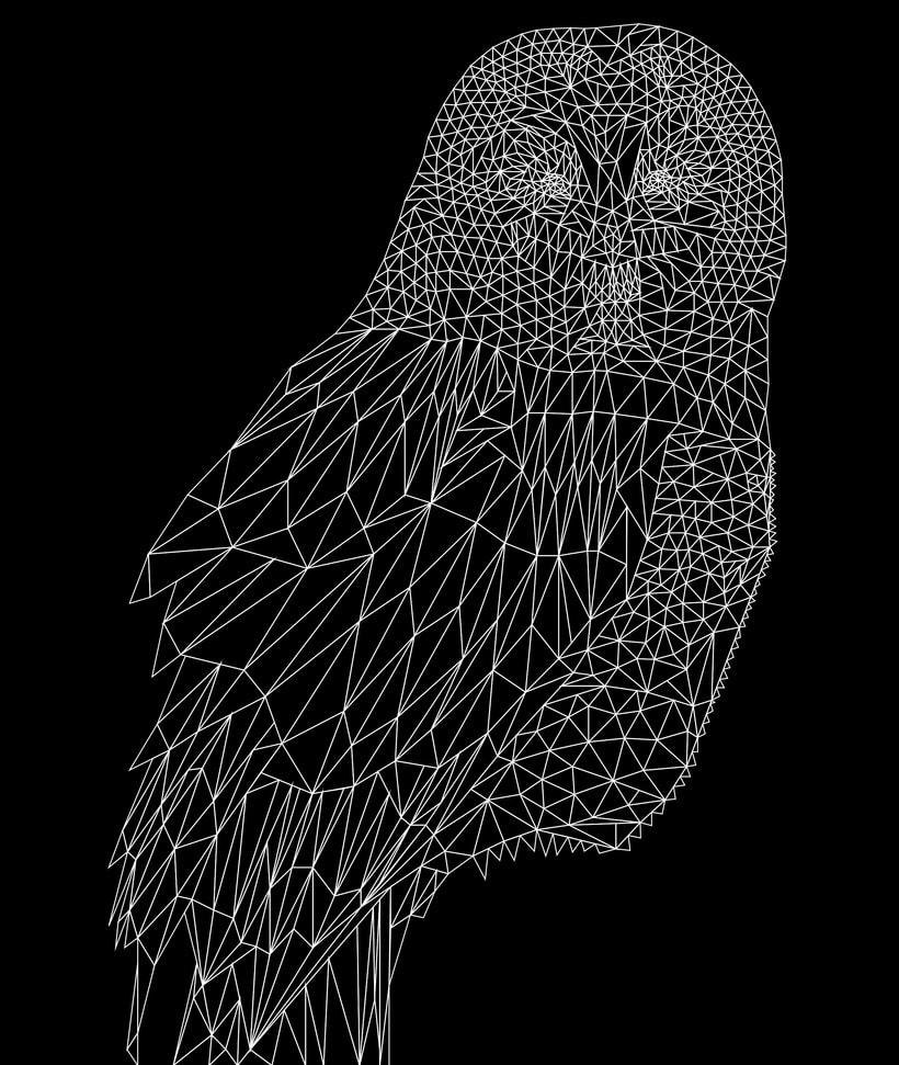 Into the geometric wild. 8