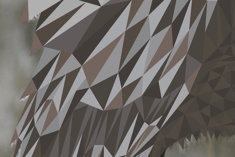 Into the geometric wild. 10