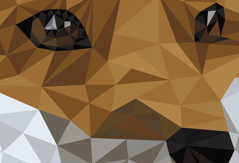 Into the geometric wild. 13