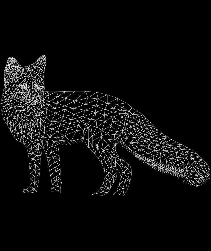 Into the geometric wild. 12