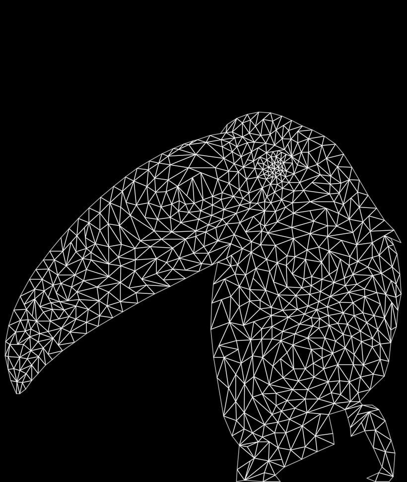 Into the geometric wild. 16