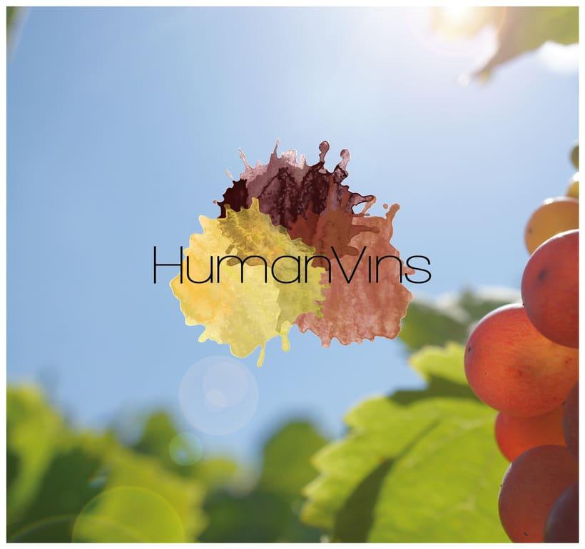 Identidad Corporativa HumanVins 1