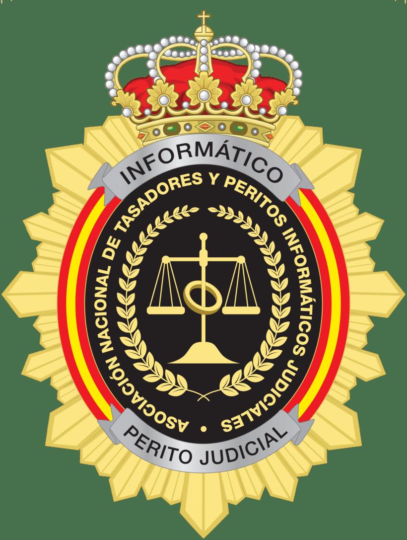 Insiginia Perito Informáticos -1