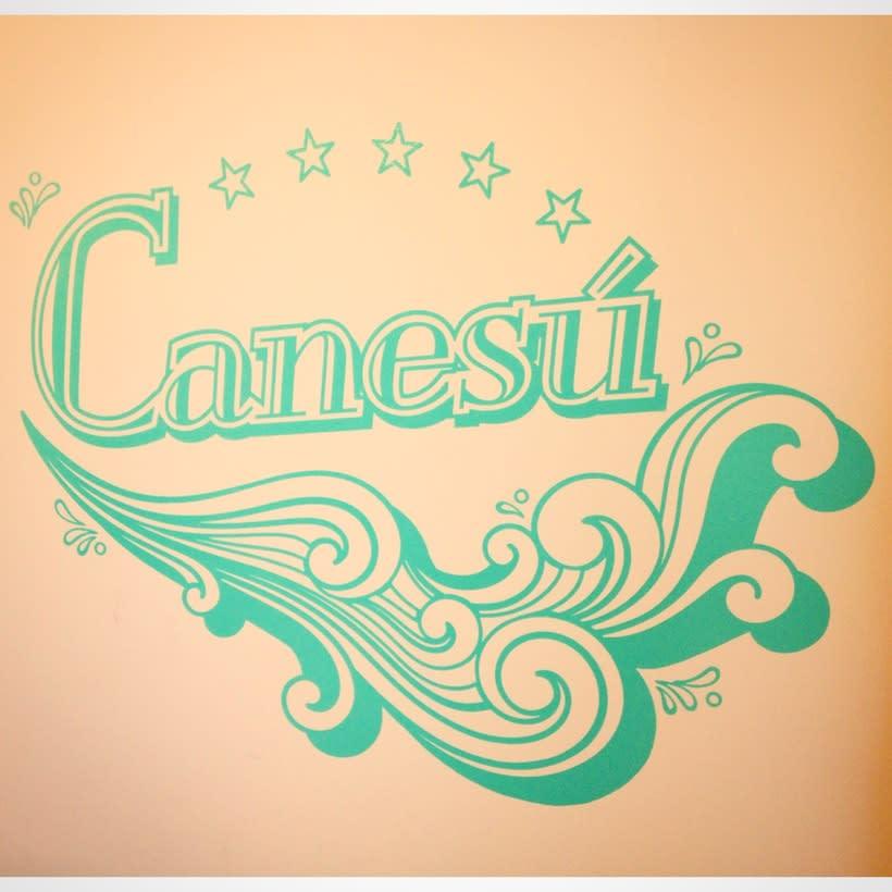 VINILOS CANESÚ 0