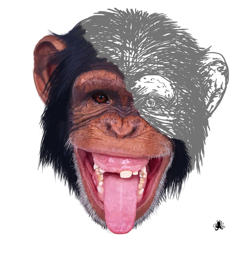 chimpance. Photoshop brushes. 0