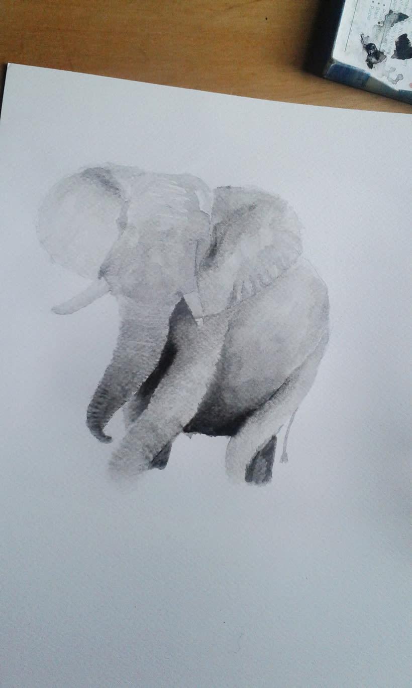 Elefante Acuarela. 5