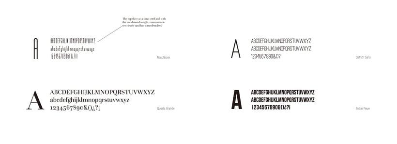 Diseño de marca + Catalogo  5