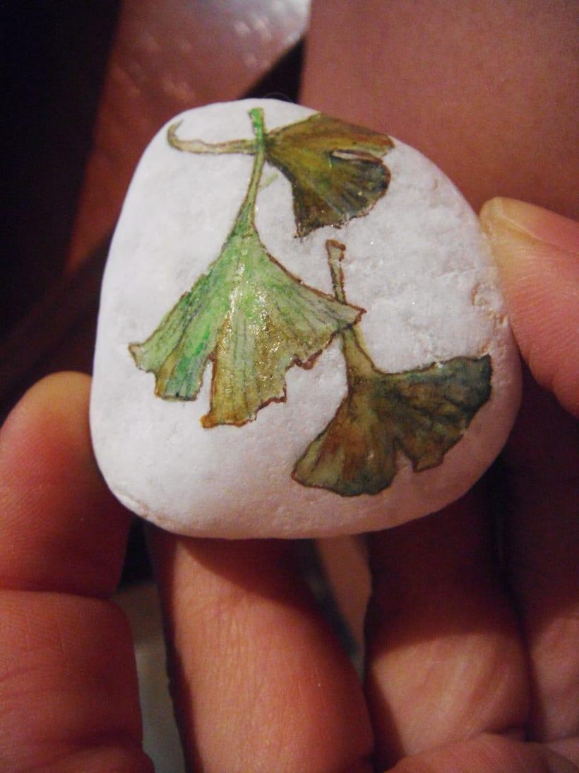 Piedras y Botones 6