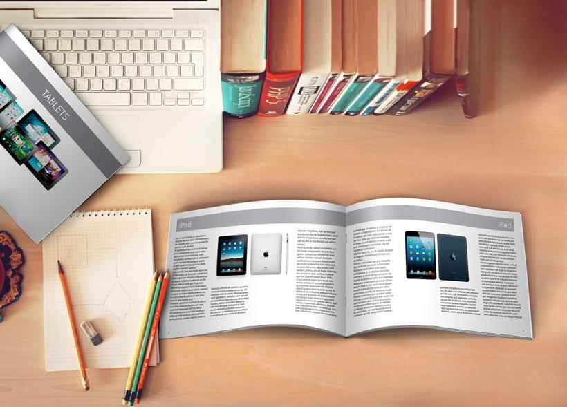 Editorial (Maquetación e infografías) 4
