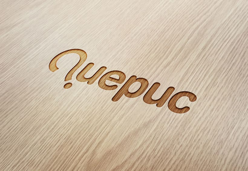 Quepuc - Naming & logo 0