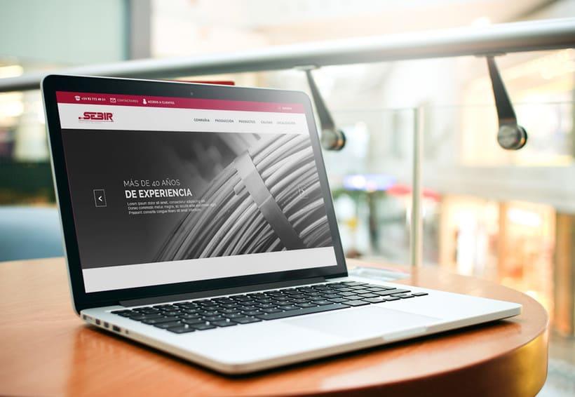 Sebir - Diseño y desarrollo web 0
