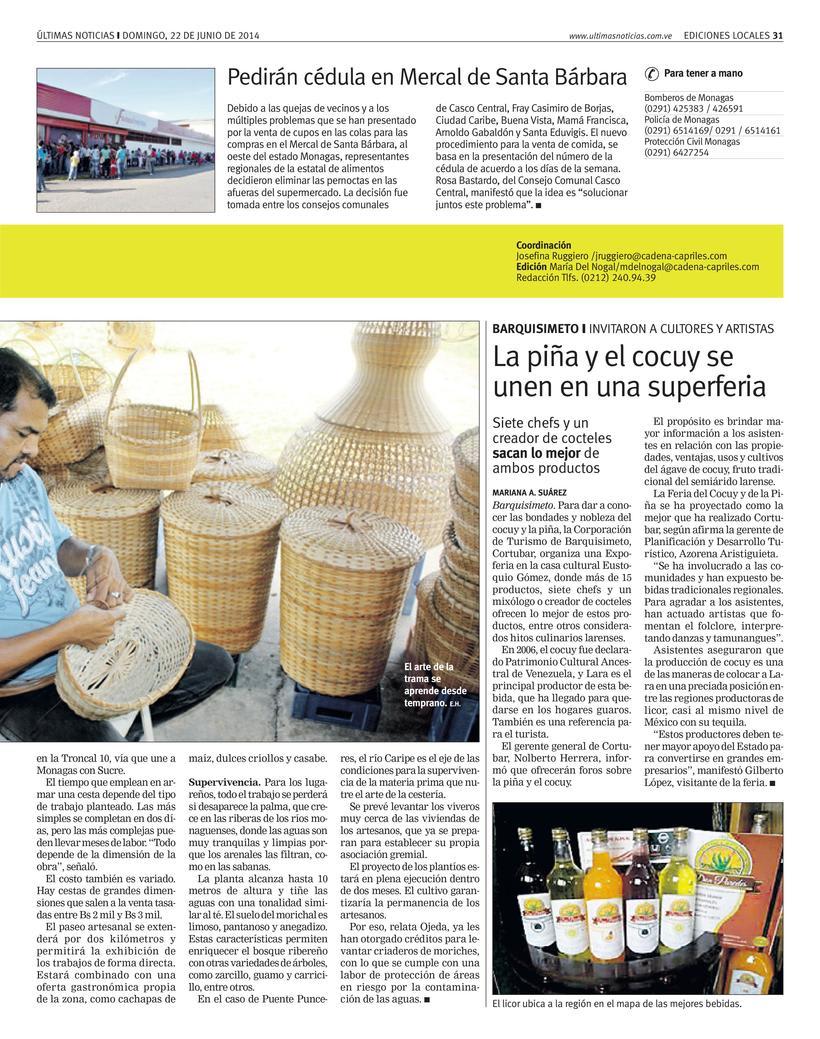 Diseños de Pulso Regional (Últimas Noticias) 3