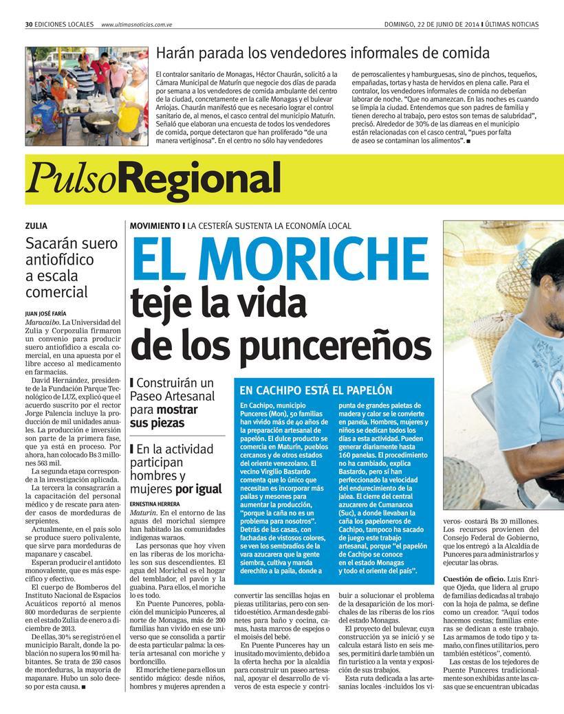 Diseños de Pulso Regional (Últimas Noticias) 2