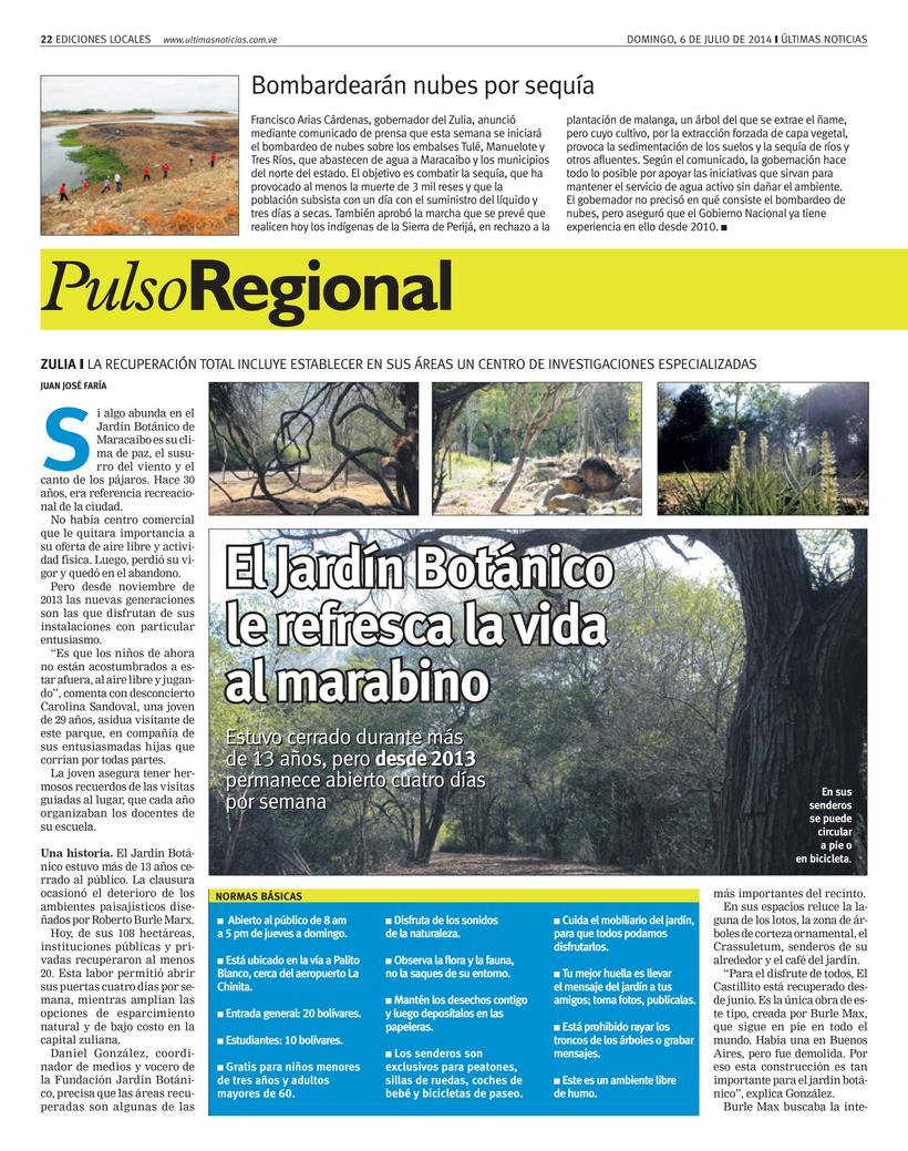 Diseños de Pulso Regional (Últimas Noticias) 12