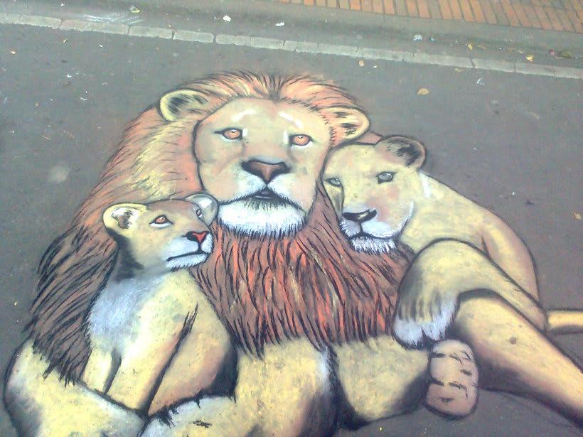 Familia de leones  0