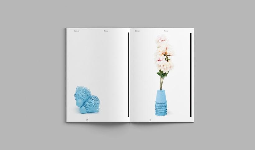 Cabinet Magazine 5