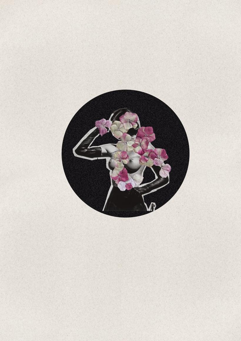 Provocación -  Serie Collage sobre Helmut Newton  1