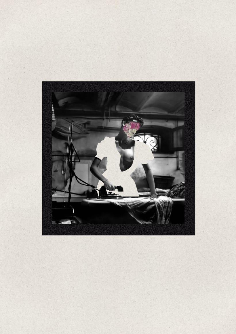 Provocación -  Serie Collage sobre Helmut Newton  2