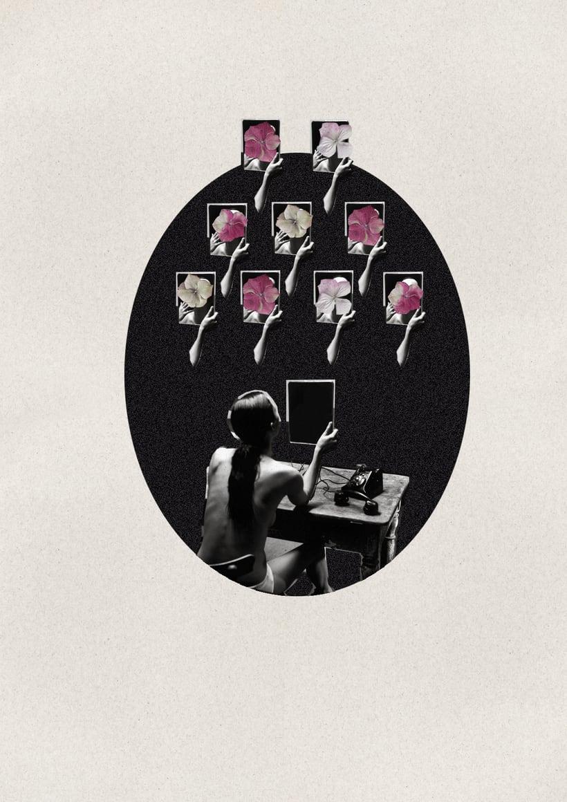 Provocación -  Serie Collage sobre Helmut Newton  6