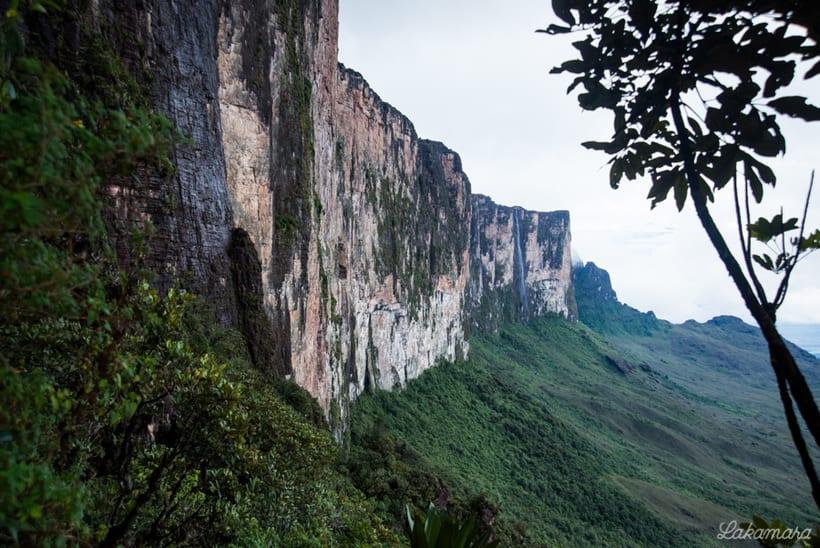 Roraima Tepuy, Venezuela. 4