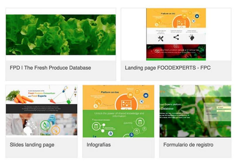 Diseñadora web freelance FOODEXPERTS 0