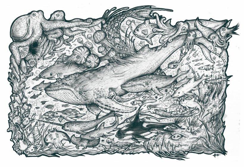 Dorsal Oceanica 0