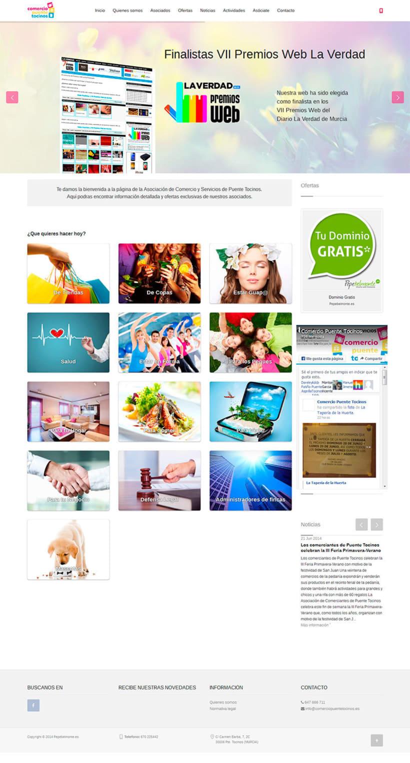Web Comercio Puente Tocinos 0