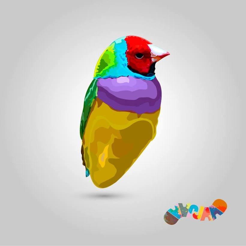 Aves 0