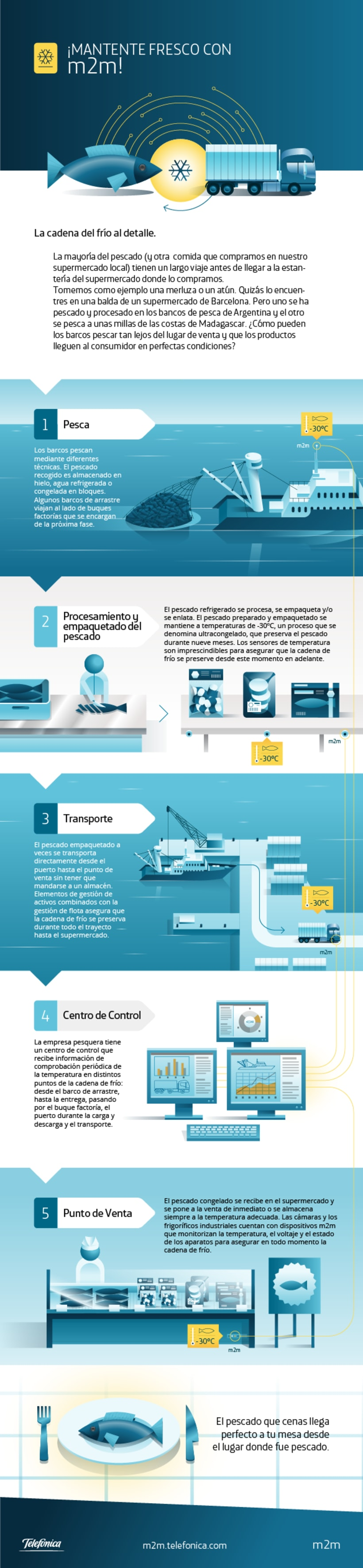 m2m Infographics 8