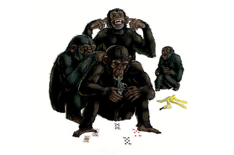 Una de monos -1