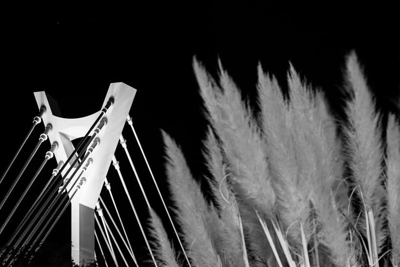 Puente sobre el Río Seco - Castellón  3