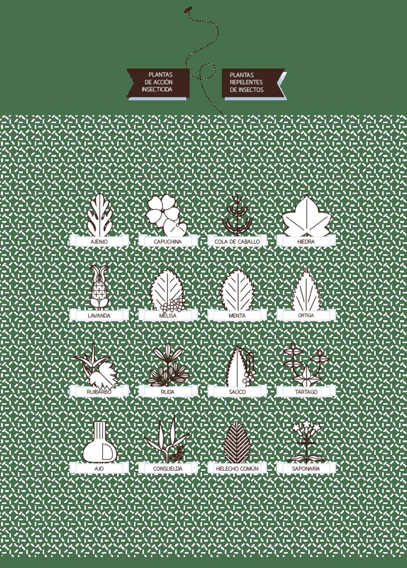 Calendario de Siembra 2