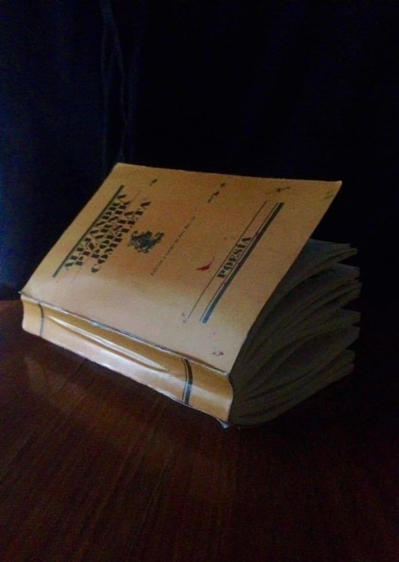 Libro de artista 0