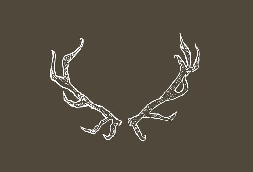 horns -1