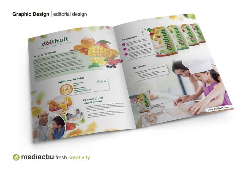 Proyecto global, editorial, web design, elementos promocionales 2