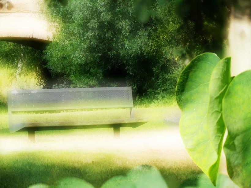 fotogafia color 2