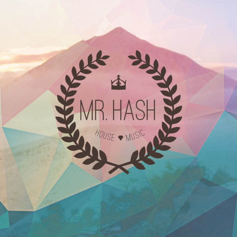 Mr. Hash Electro music advertisement -1